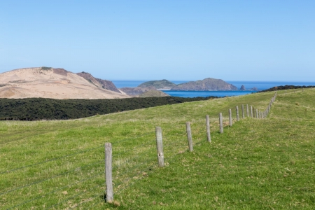 Küstenlandschaft am Cape Reinga