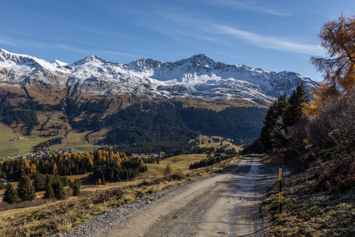 Alp Stätz auf der Lenzerheide in Graubünden