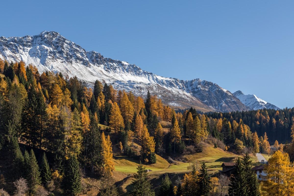 Herbst in Churwalden in Graubünden