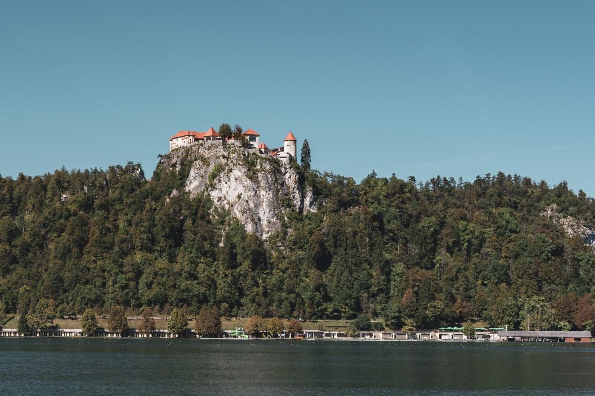 Blejski grad (Burg Bled) am Blejsko jezero (Bleder See)