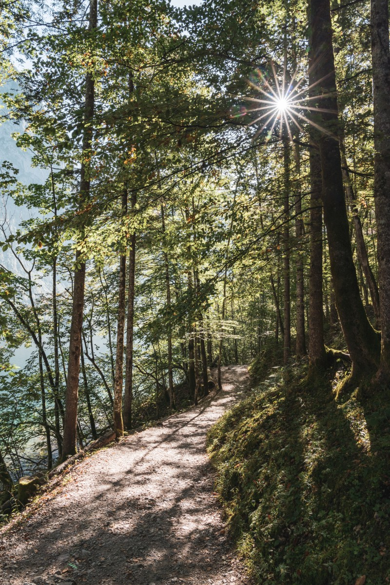 Wanderweg am Obersee im Nationalpark Berchtesgaden