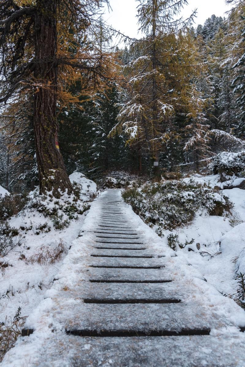 Wanderweg in der Albula-Region