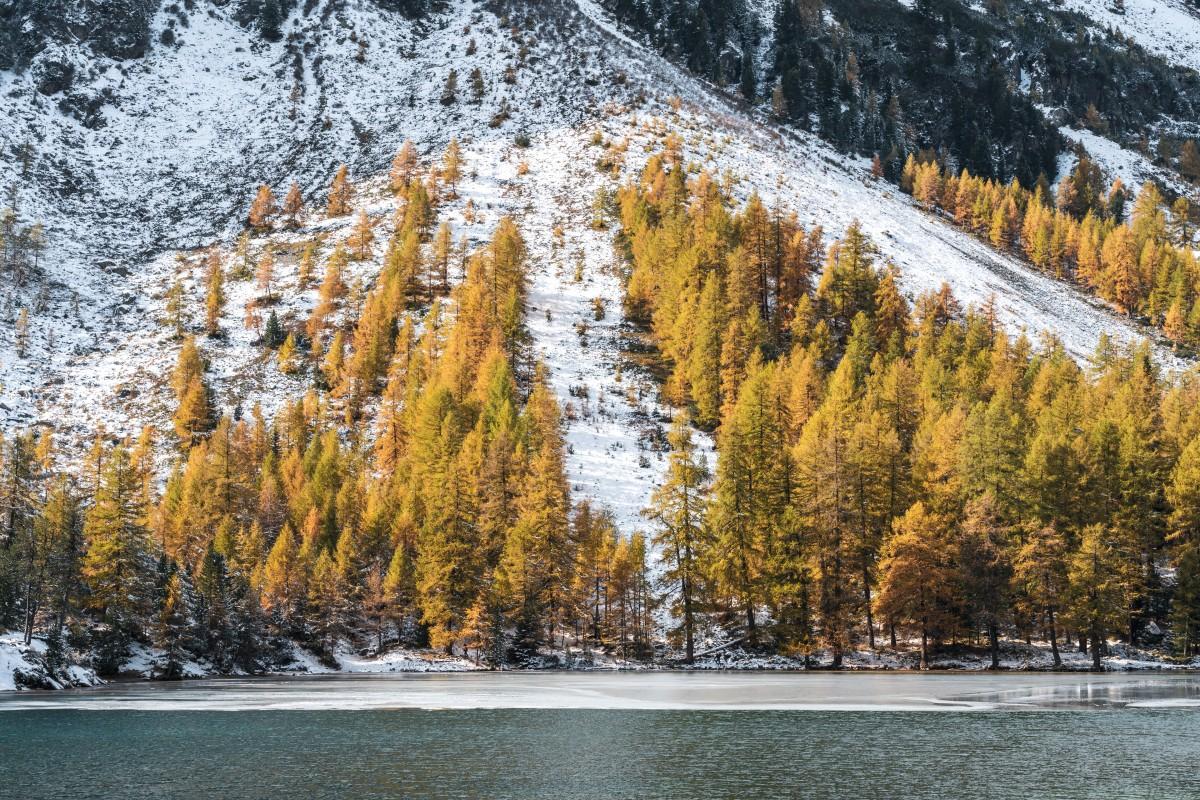 Palpuognasee mit Herbstfarben