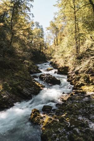 Vintgar-Klamm Triglav-Nationalpark in Slowenien