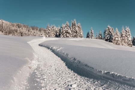 Wanderweg in Parpan in der Schweiz