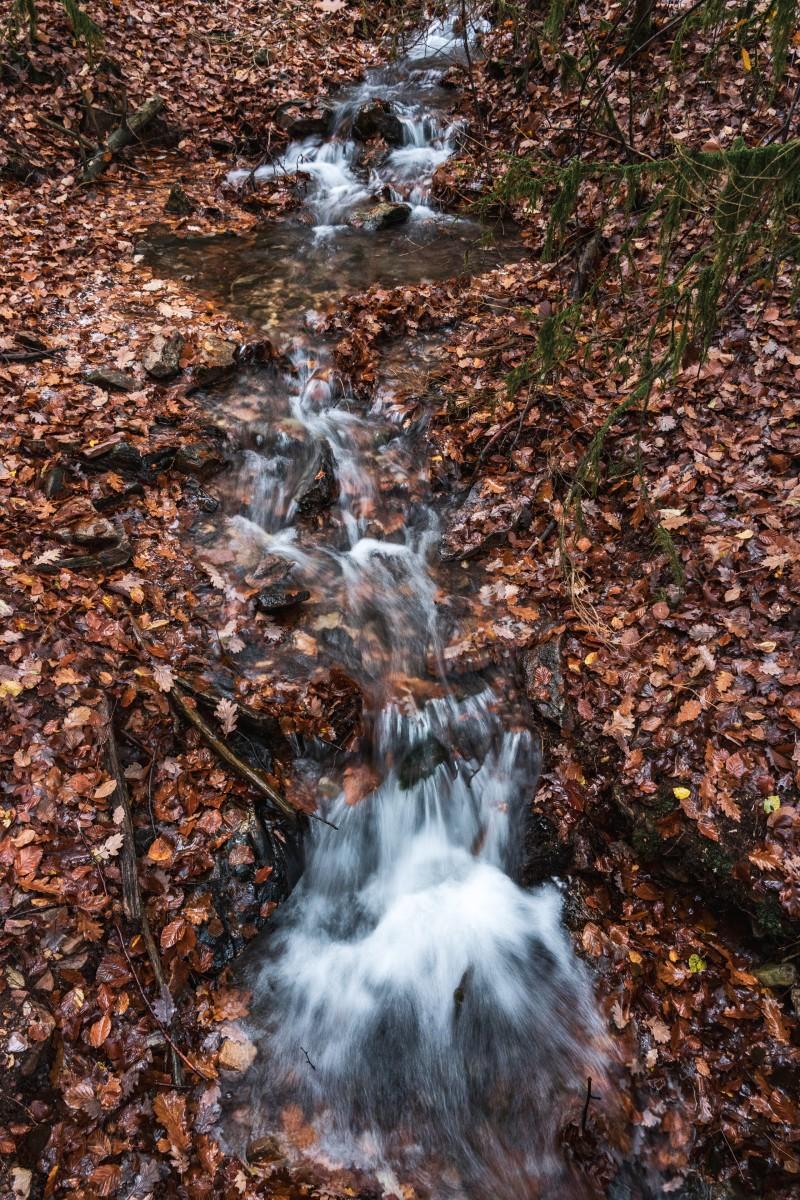 Herbstfarben und Bach im Wald bei Weiskirchen