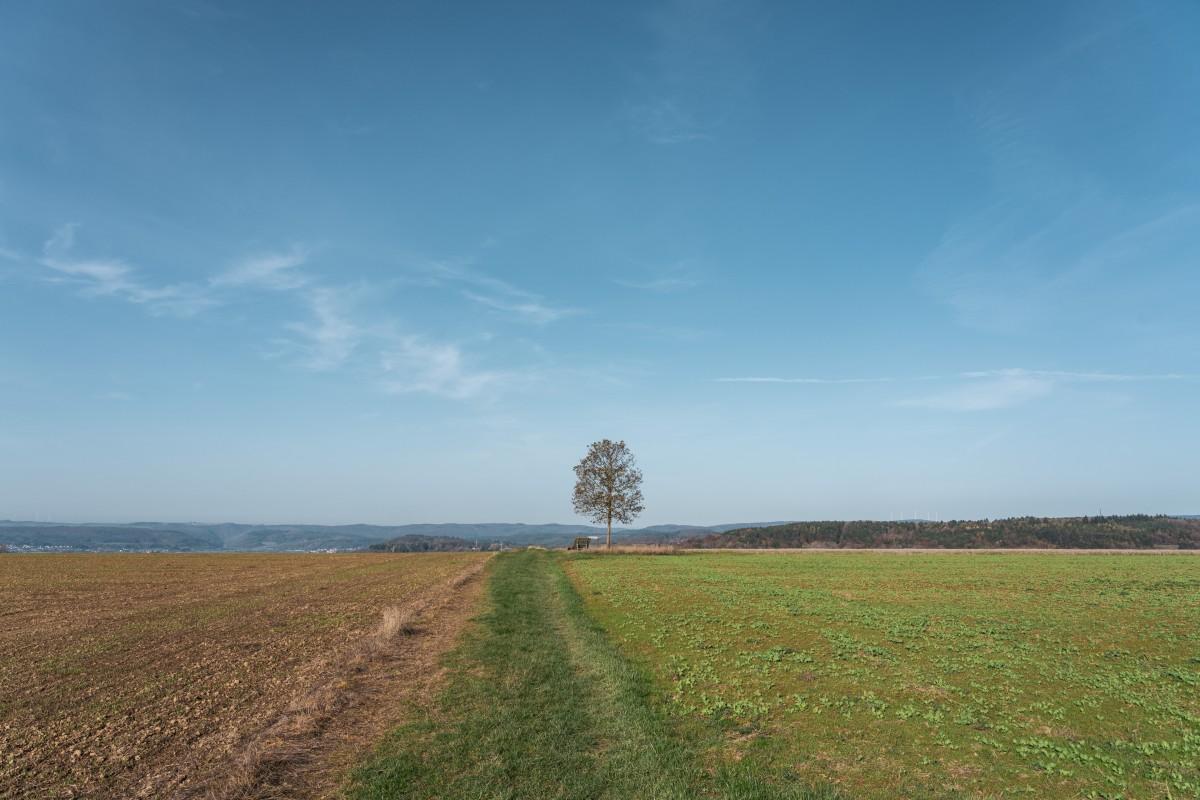 Panorama vom Saarlouiser Berg bei Beckingen