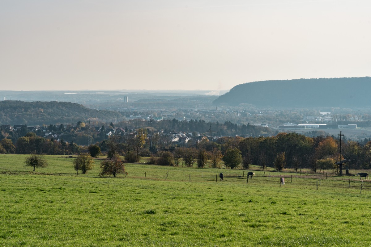 Saarblicke bei Beckingen