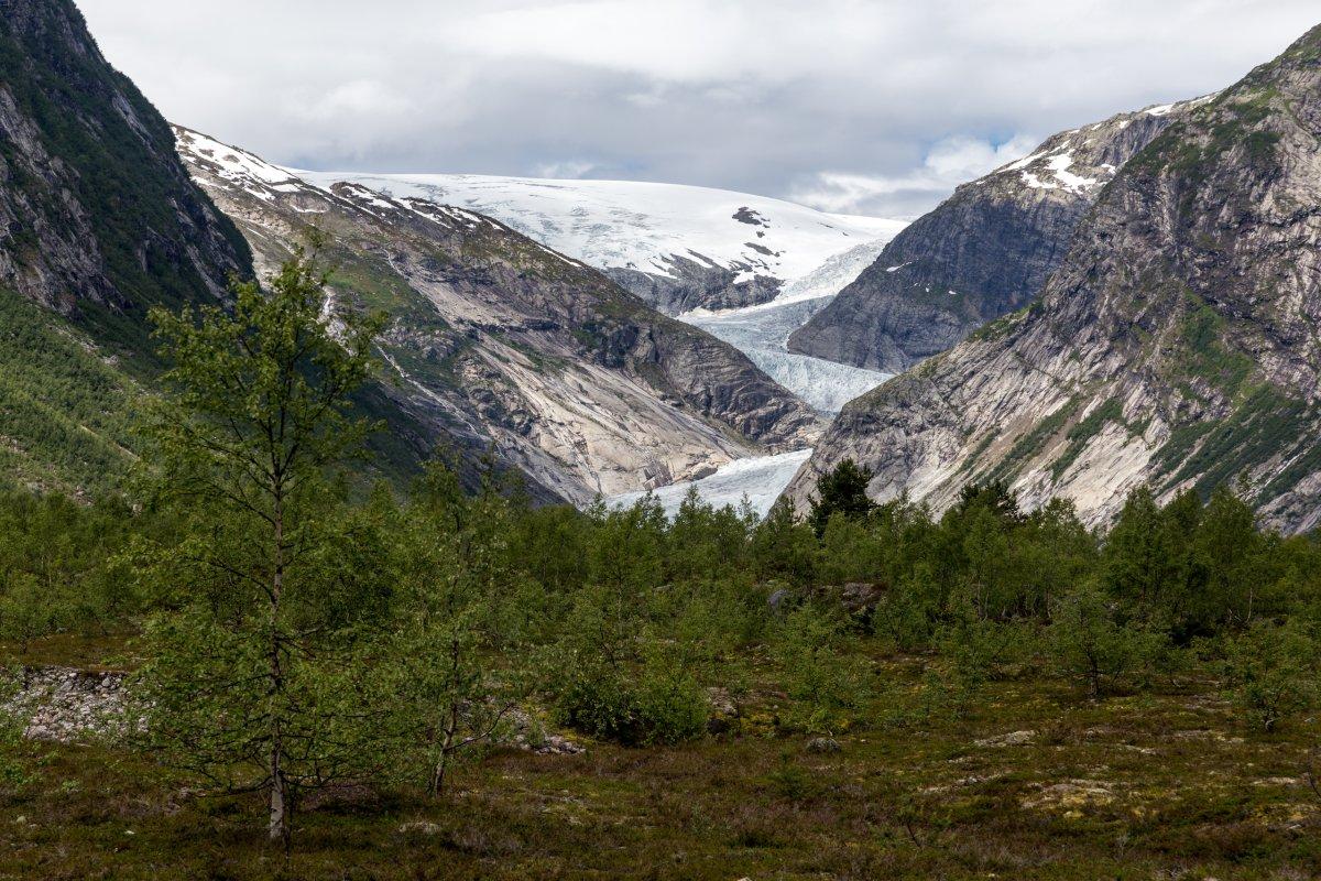 Nigardsbreen aus der Distanz