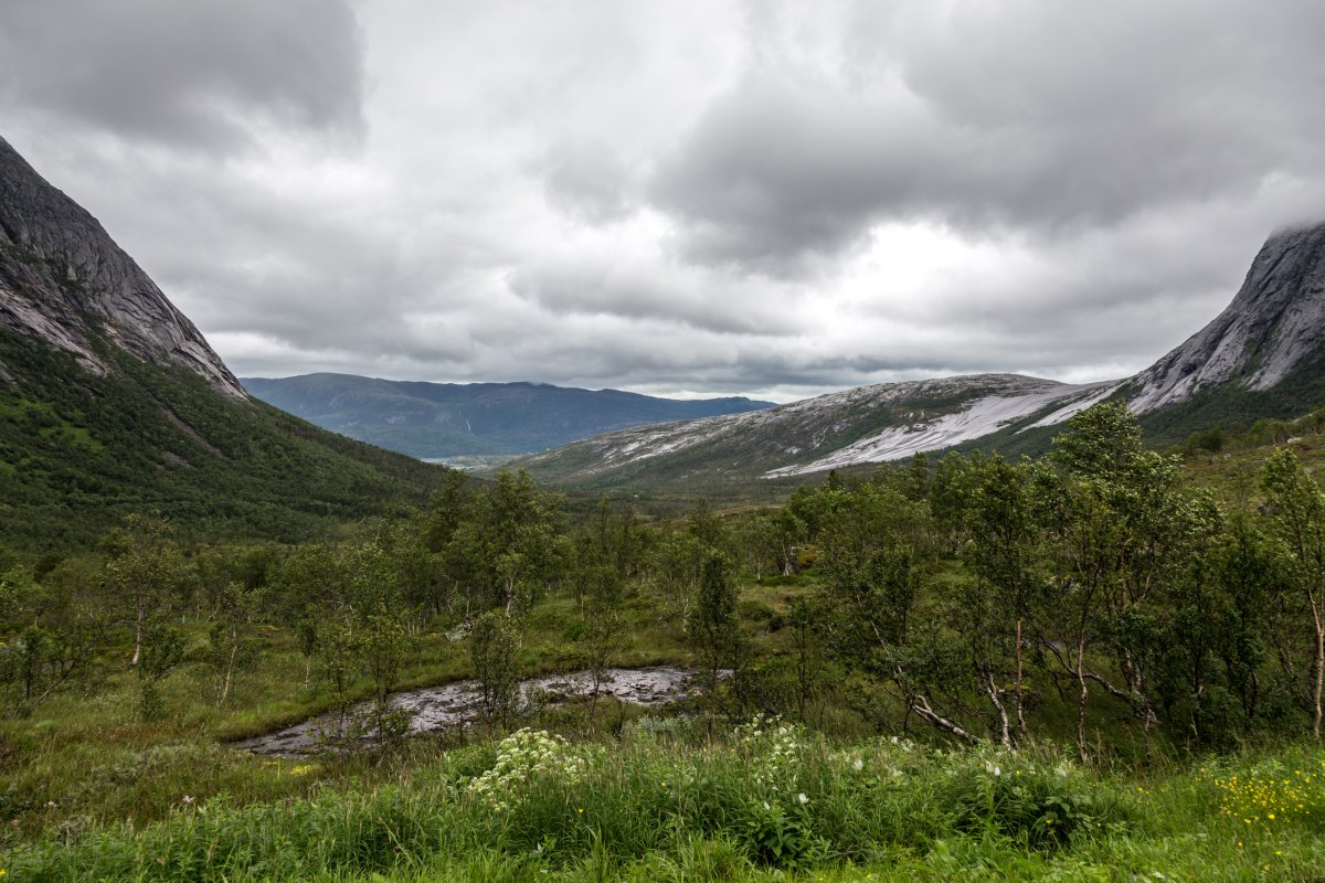 Norwegische Landschaft bei Skarberget