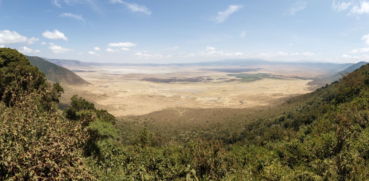 Panorama auf den Ngorongoro-Krater