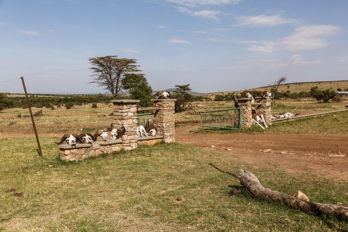 Ehemalige Grenze zu Kenia, Serengeti National Park