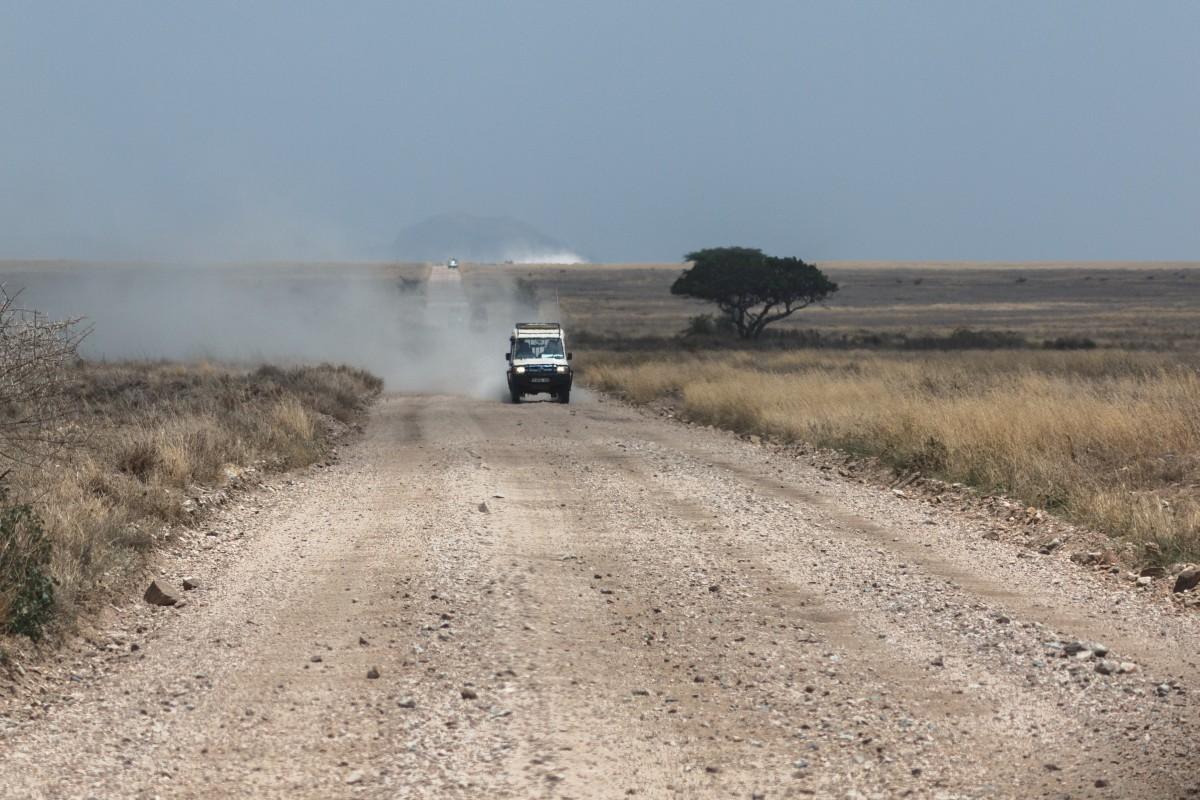 Straße durch die Serengeti