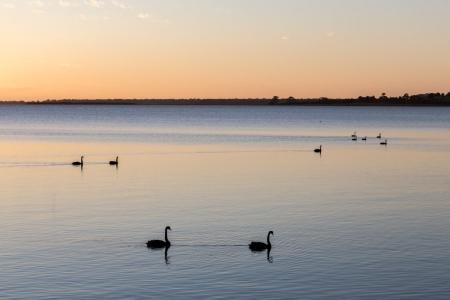 Sonnenaufgang in Paynesville an der australischen Küste