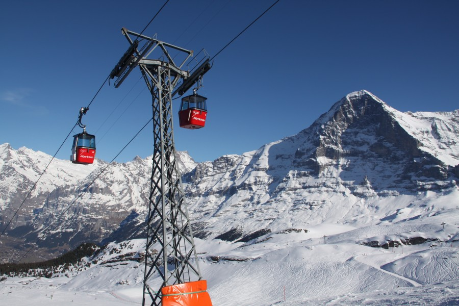 Grindelwald - Wengen - Jungfrauregion • Schweizer Urgesteine