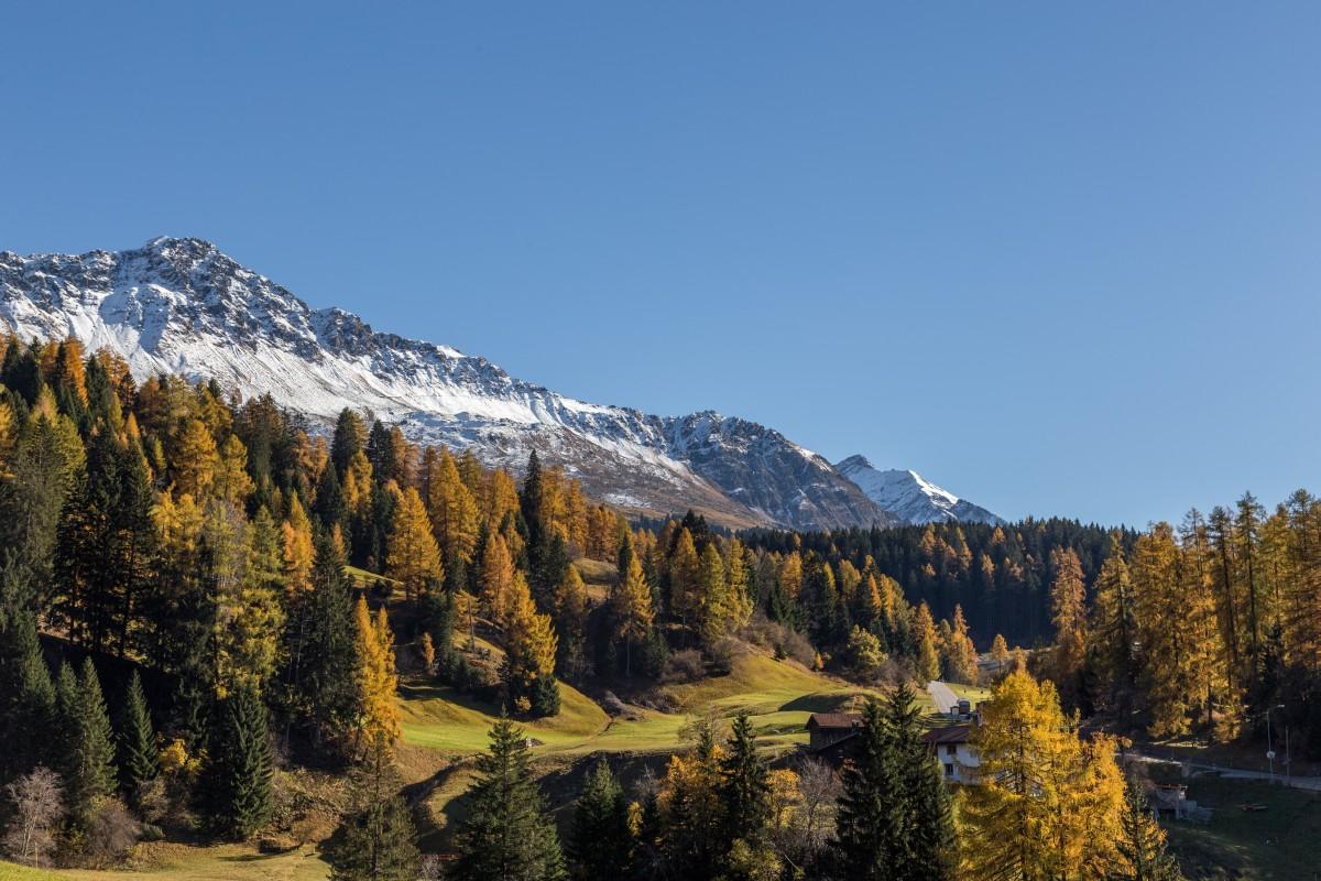 Herbst in Graubünden