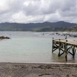 Te Araroa – Der lange Weg zum East Cape