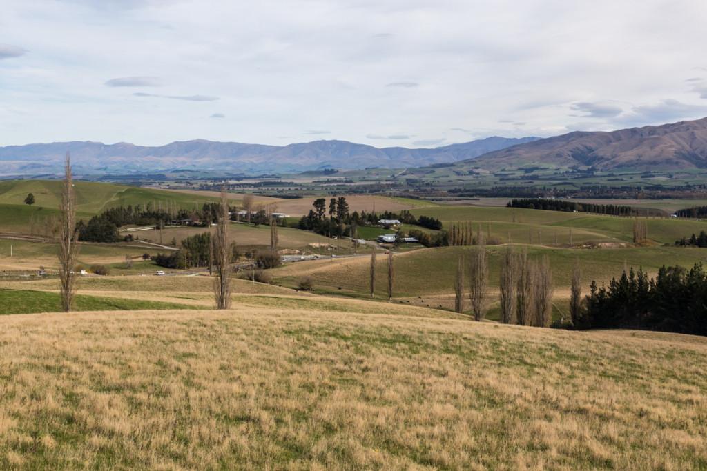 Fahrt in die Canterbury Plains nach Geraldine
