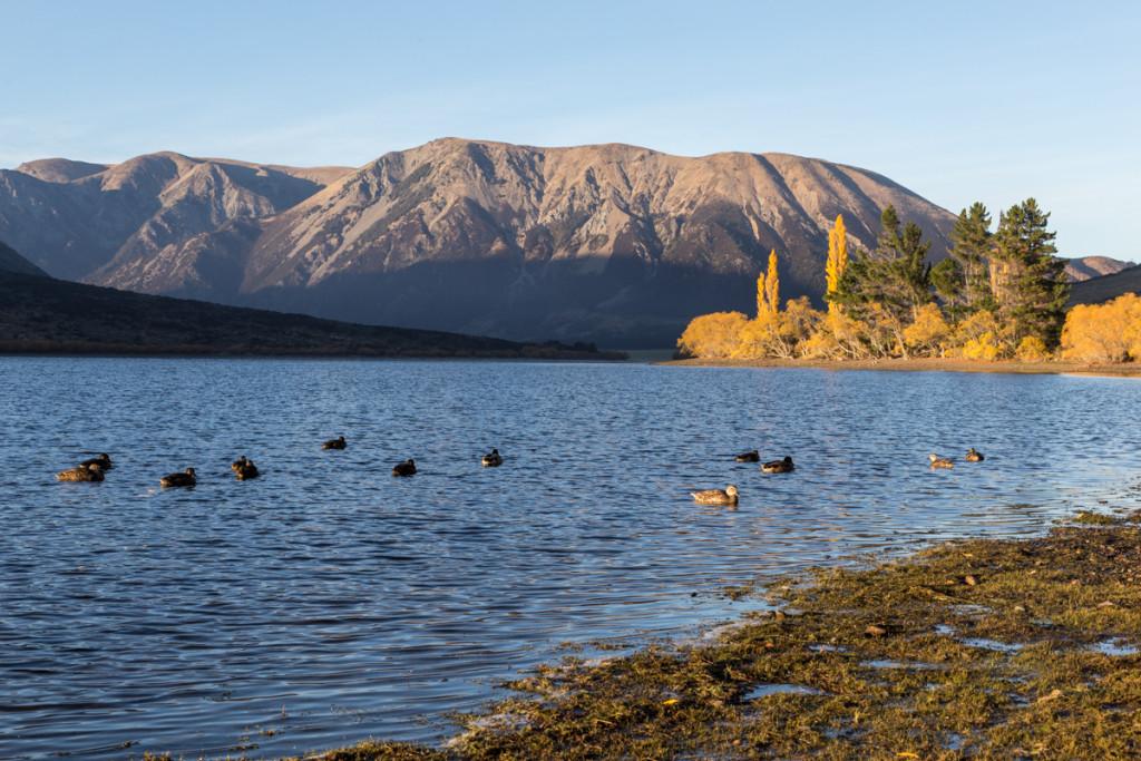 Sonnenaufgang am Lake Pearson