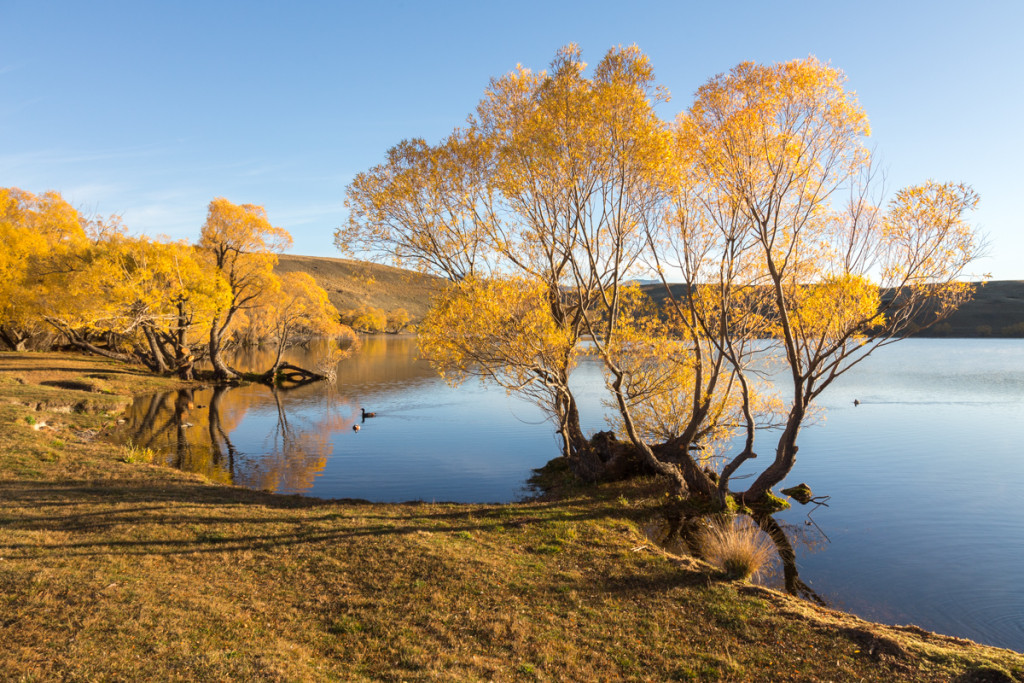 Sonnenaufgang am Lake MacGregor