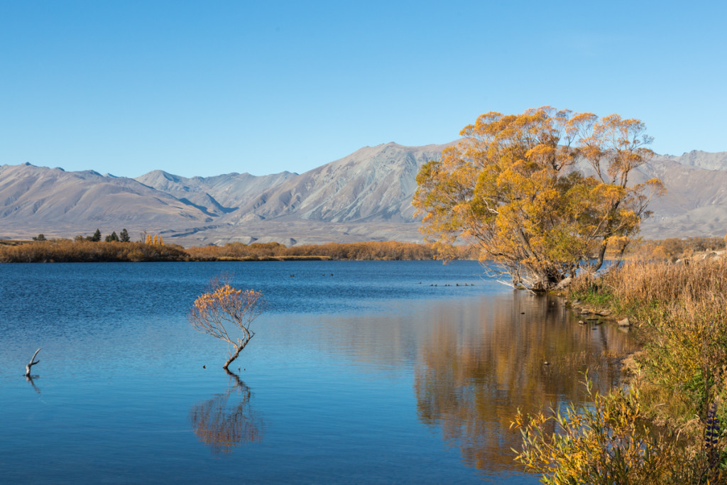 Herbstfarben am Lake MacGregor