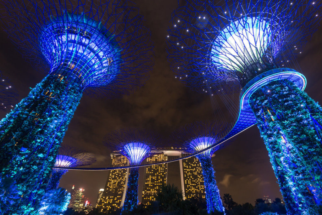 Supertree Grove in den Gardens by the Bay