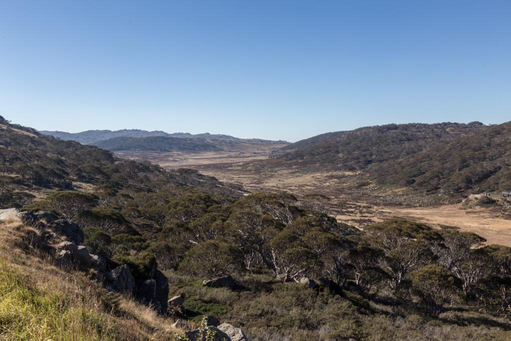 Landschaft am Charlotte Pass im Mount Kosciuszko National Park