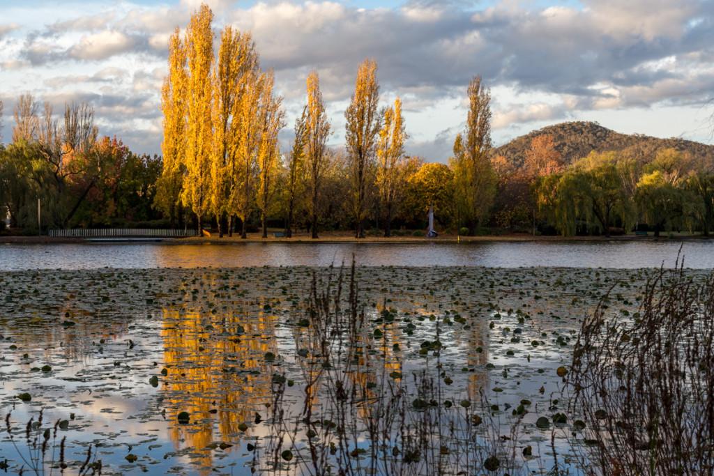 Parkanlage in Canberra