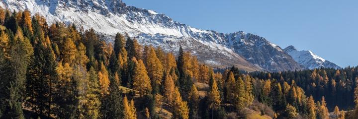 Aufnahmen aus den Alpen
