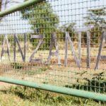 Hakuna Matata • Tansania 2017