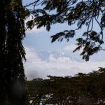 Ein Blick auf den Kilimanjaro vor der Heimreise nach Europa