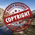 Urheberrechtsreform – Ich bin ein Bot, holt mich hier raus!