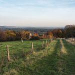 Traumschleife Bietzerberger – Hoch über dem Saarland